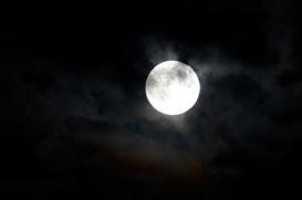 SUper Moon - 15