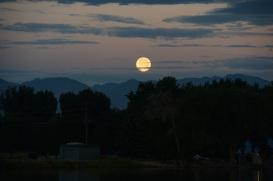 SUper Moon - 18