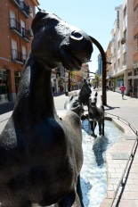 Fountain-JDS_0905