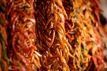 Spices-JDS_1743
