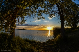 Stearns Lake Broomfield, CO July 4, 2016