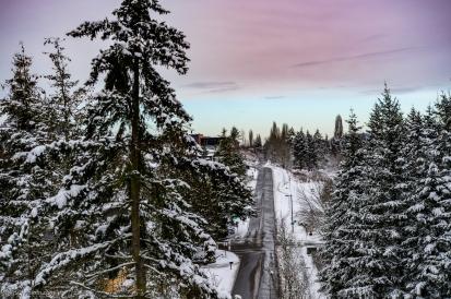 Mercer Island - PNW 2019 Winter Storms - Feb. 4 - 11, 2019
